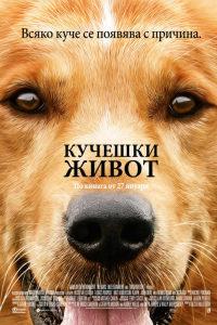Снимка: Кучешки живот