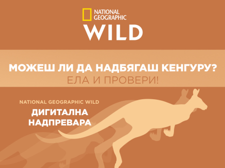 "Picutre: ""National Geographic Wild Digital Race"""